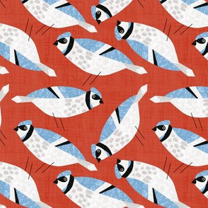 Bird Alphabet - J is for Jay
