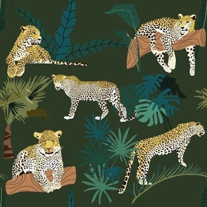 Leopards and Plants