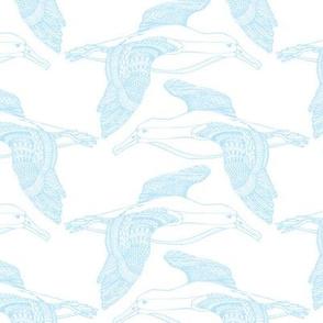 Albatross Baby Blue