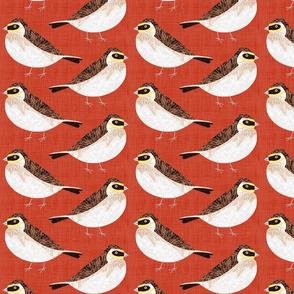 Bird Alphabet - L is for Lark