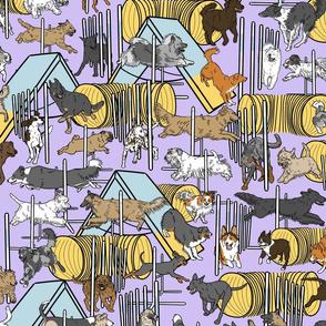 Simple assorted Agility dogs - purple