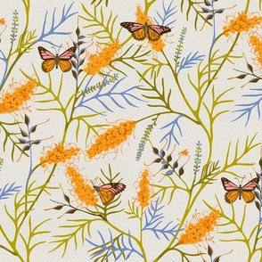 Grevillean Butterflies