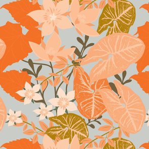 orange blooms and leaves