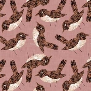 Bird Alphabet - N is for Nightingale