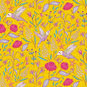 Charming Hummingbirds