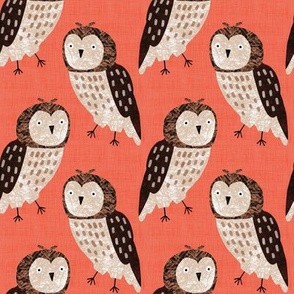 Bird Alphabet - O is for Owl