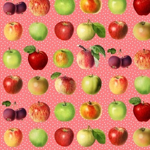 Apples and dots on coral ground