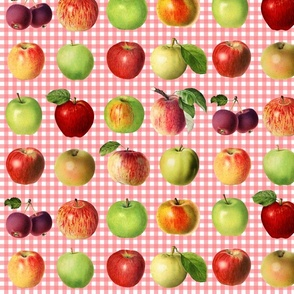 Apples on coral gingham