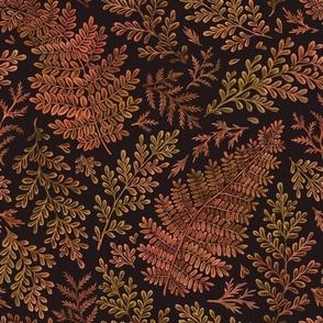 Autumnal ferns