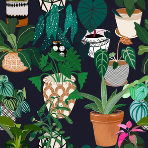 Plants and pattern are my  artistic voice