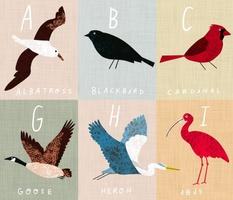 """Bird Alphabet Cheater Quilt 42""""x36"""""""