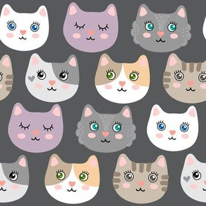 Cute cats - on gray
