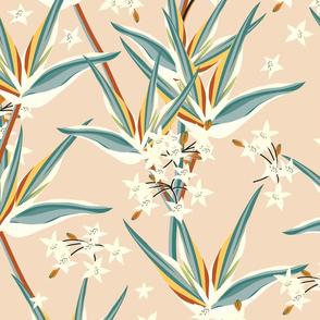 starflower blooms