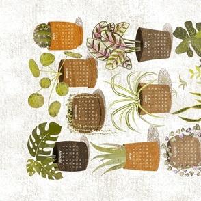 Popular Plants Of 2021