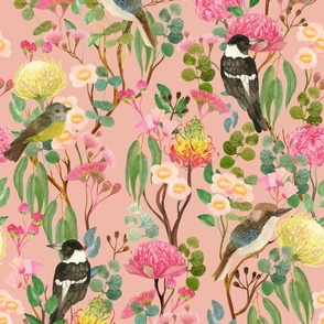 Australian Birds and Blooms {Blush}