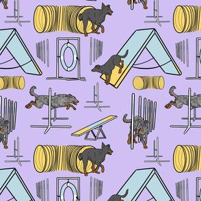 Simple natural Beauceron agility dogs - purple