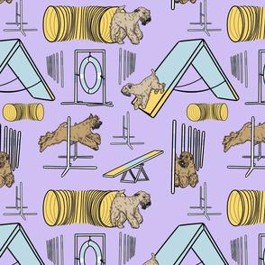 Simple docked Soft coated Wheaten terrier agility dogs - purple