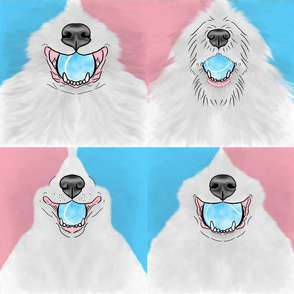 Nosey pink and blue Flyball Dog faces