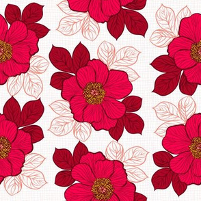 Flowers of peony - red on white