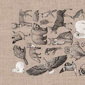 wildlife alphabet tea towel