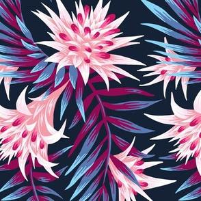 Fasciata Tropical - Dark Purple / Pale Pink