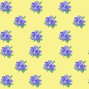Violets in Yellow