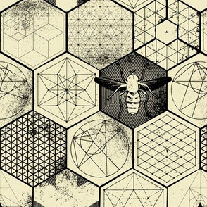 The Honeycomb Conjecture-inverted