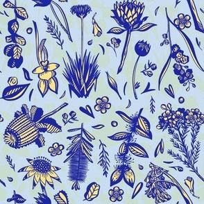 Aussie Flora - Blue and Yellow