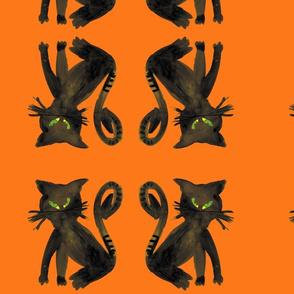 blackcat_cestlaviv