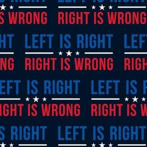 Vote Blue Left Wing Democrat