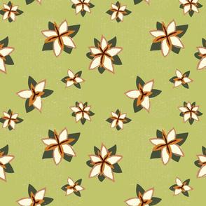 Edelweiss_green