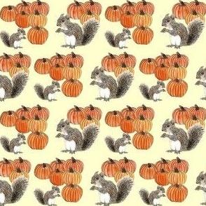 Squirrels and Pumpkins