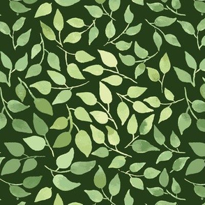 Small_leaves_dark_green