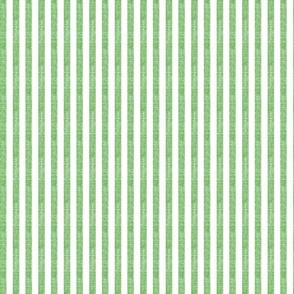 "Washed Green 3/8"" Stripe"