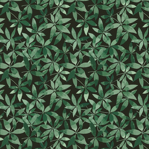 Tropical_leaves