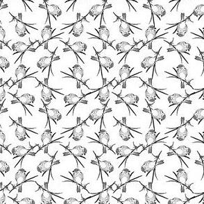 Finch Bird Vintage Bird Art Pattern (Mini Scale)