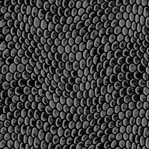 ★ REPTILE SKIN ★ Gray - Large Scale / Collection : Snake Scales – Punk Rock Animal Prints 4