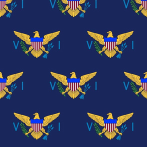 "US Virgin Islands flag, 3"" staggered on navy blue"