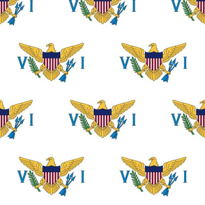 """US Virgin Islands flag, 3"""" staggered on white"""