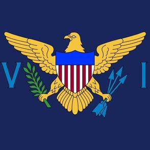 "US Virgin Islands flag, 12x18""navy blue panel"