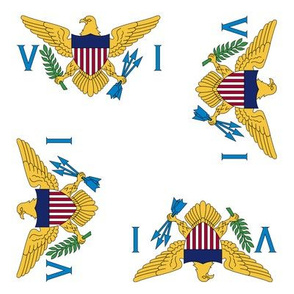 """US Virgin Islands flag, 3"""" rotated on white"""