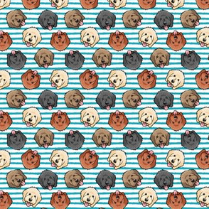 """(3/4"""" scale) all the doodles - cute goldendoodle dog breed - blue stripes - LAD20BS"""