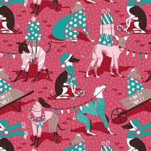 Small scale // Greyhounds Christmas dogwalk // red background