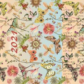 2021 Butterfly and Moth Calendar