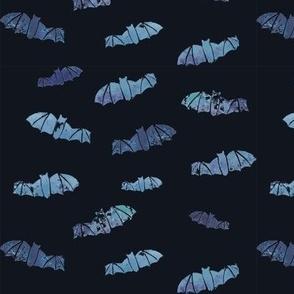 Ghost Bats, on blue-black