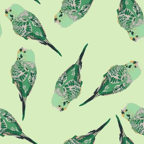 Victor the Parakeet mint
