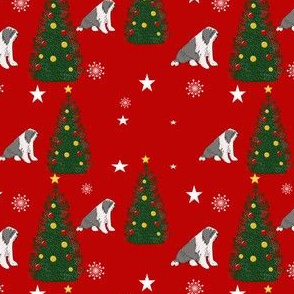 Dog with a Christmas Tree