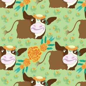 Happy Cow!!