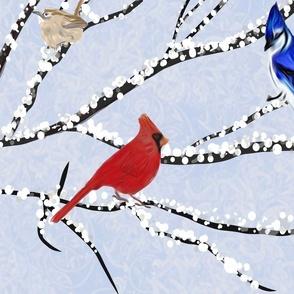 "Winter Birds SW VA -  21"""