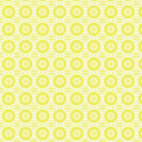 Persian-white mustard